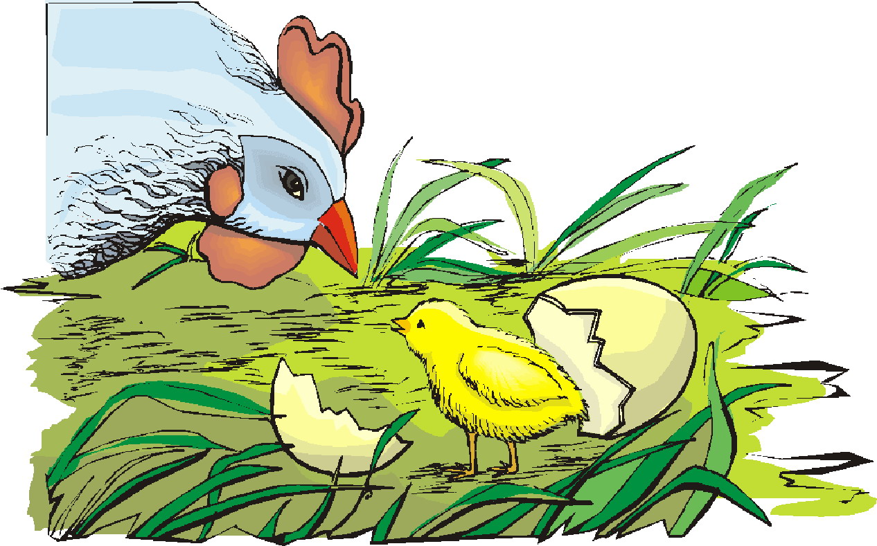 Chickens clipart line art. Clip farm picgifs com
