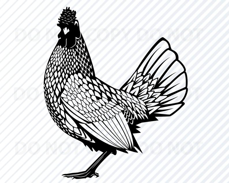 Chickens clipart line art. Chicken svg files for