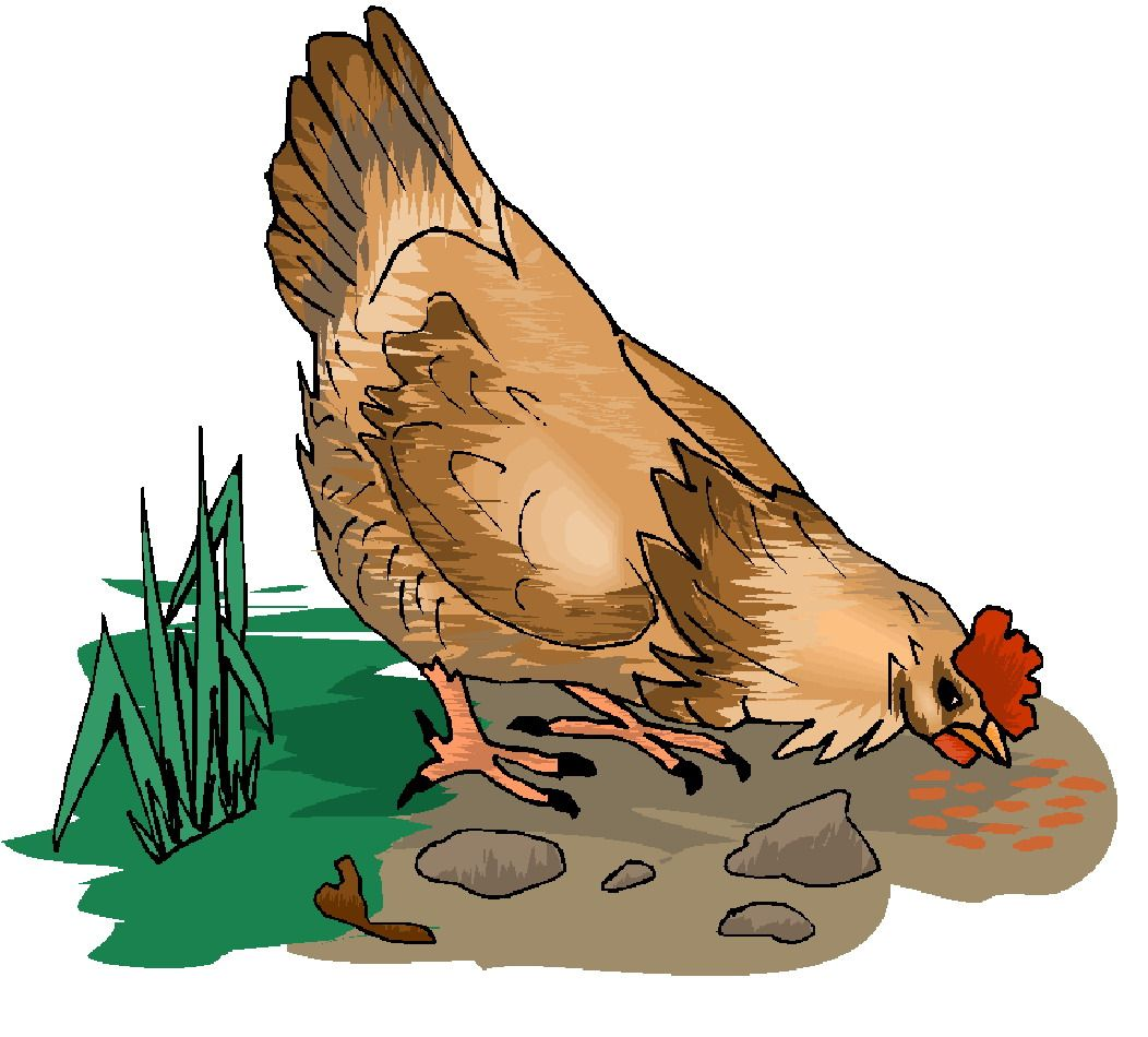 Chickens clipart roasted chicken. Clip art for tags