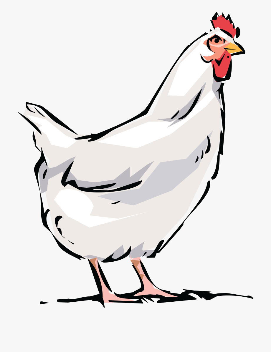 Chickens clipart transparent background. Latest cliparts for free