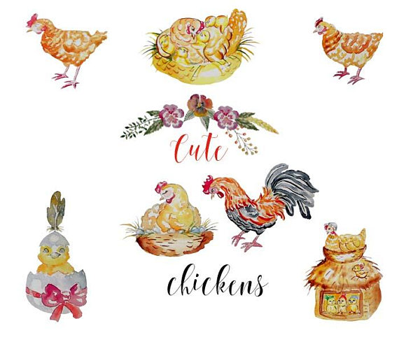 Chicken animal farm commercial. Chickens clipart watercolor