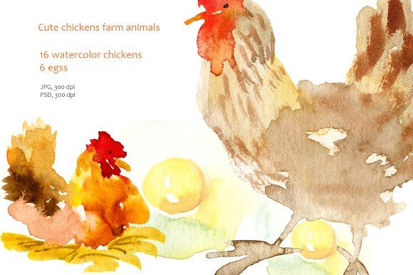 Chickens clipart watercolor. Chicken graphics hello and