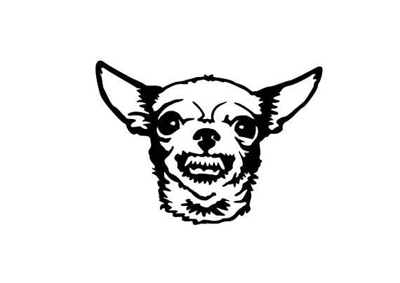 Chihuahua clipart angry chihuahua. Growling vinyl bumper sticker
