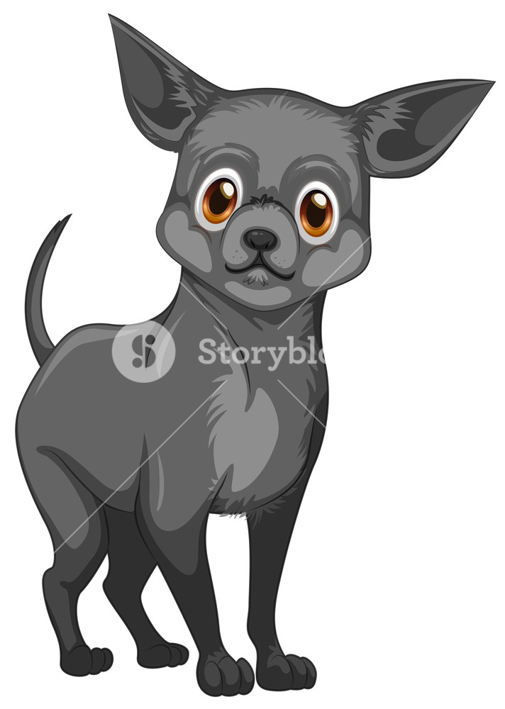 Chihuahua clipart angry chihuahua. Illustration of a small