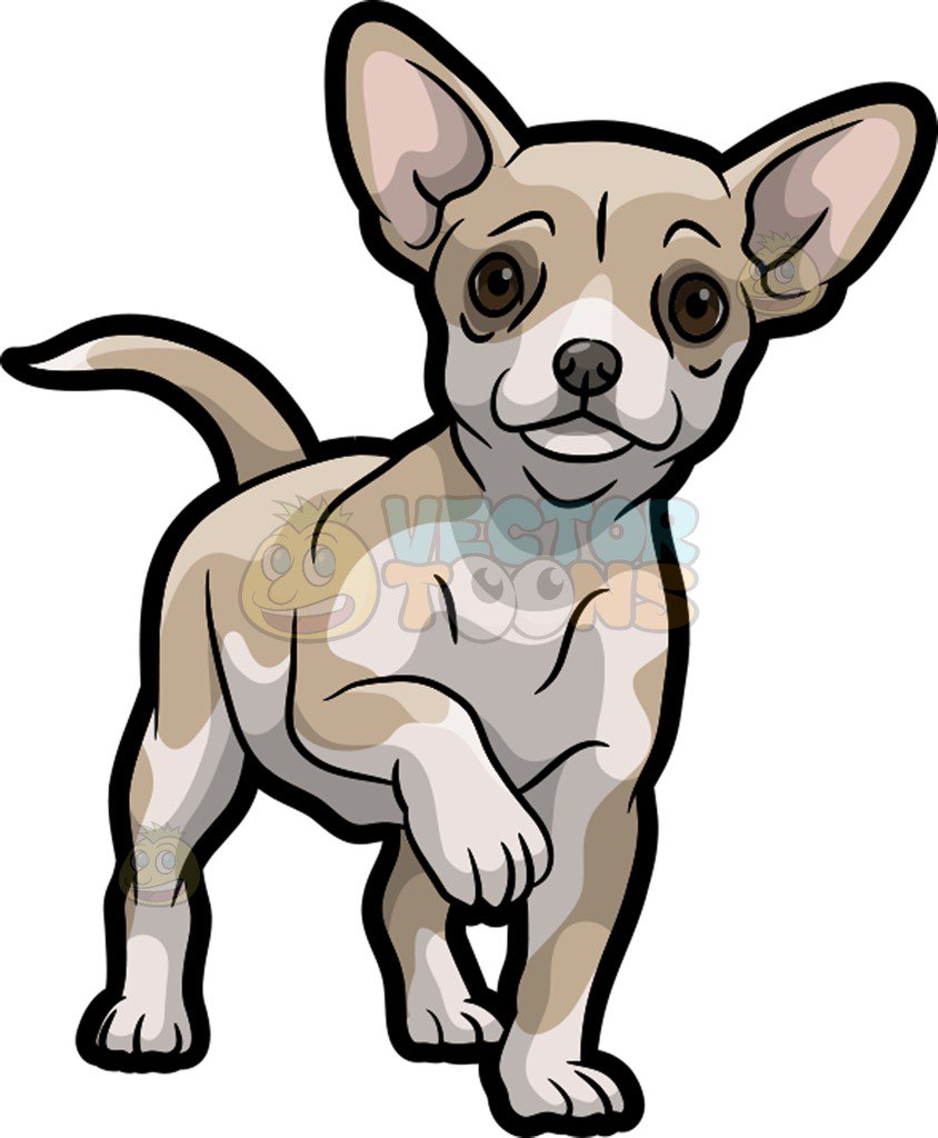 Chihuahua clipart animated. Chiuaua free download best