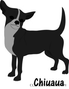 Dog animal free images. Chihuahua clipart black and white