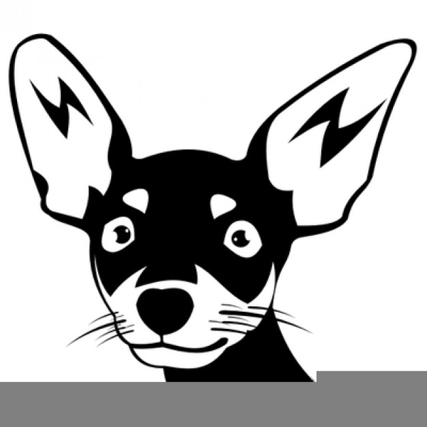 Chihuahua clipart black and white. Free images at clker