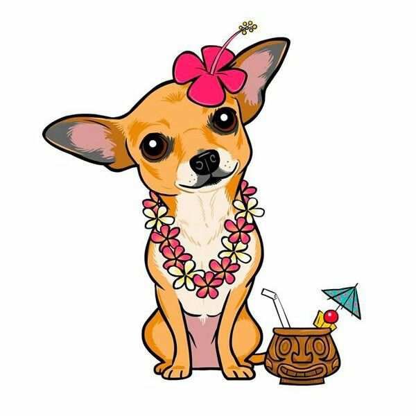 Chihuahua clipart chihuahua puppy. In cancun under the