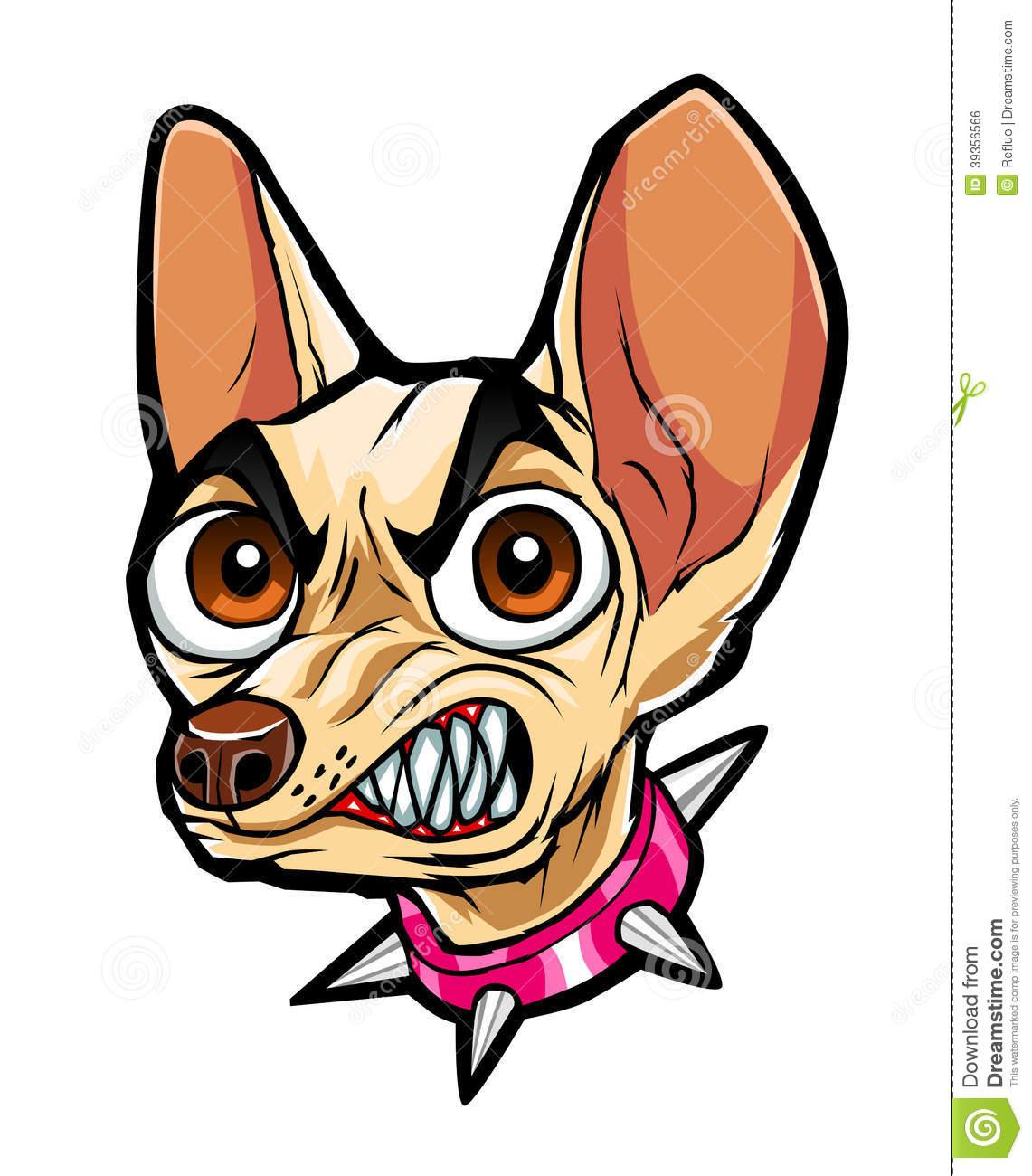 Mean face . Chihuahua clipart chihuahua puppy