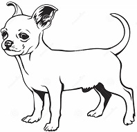 Free the is a. Chihuahua clipart chiwawa