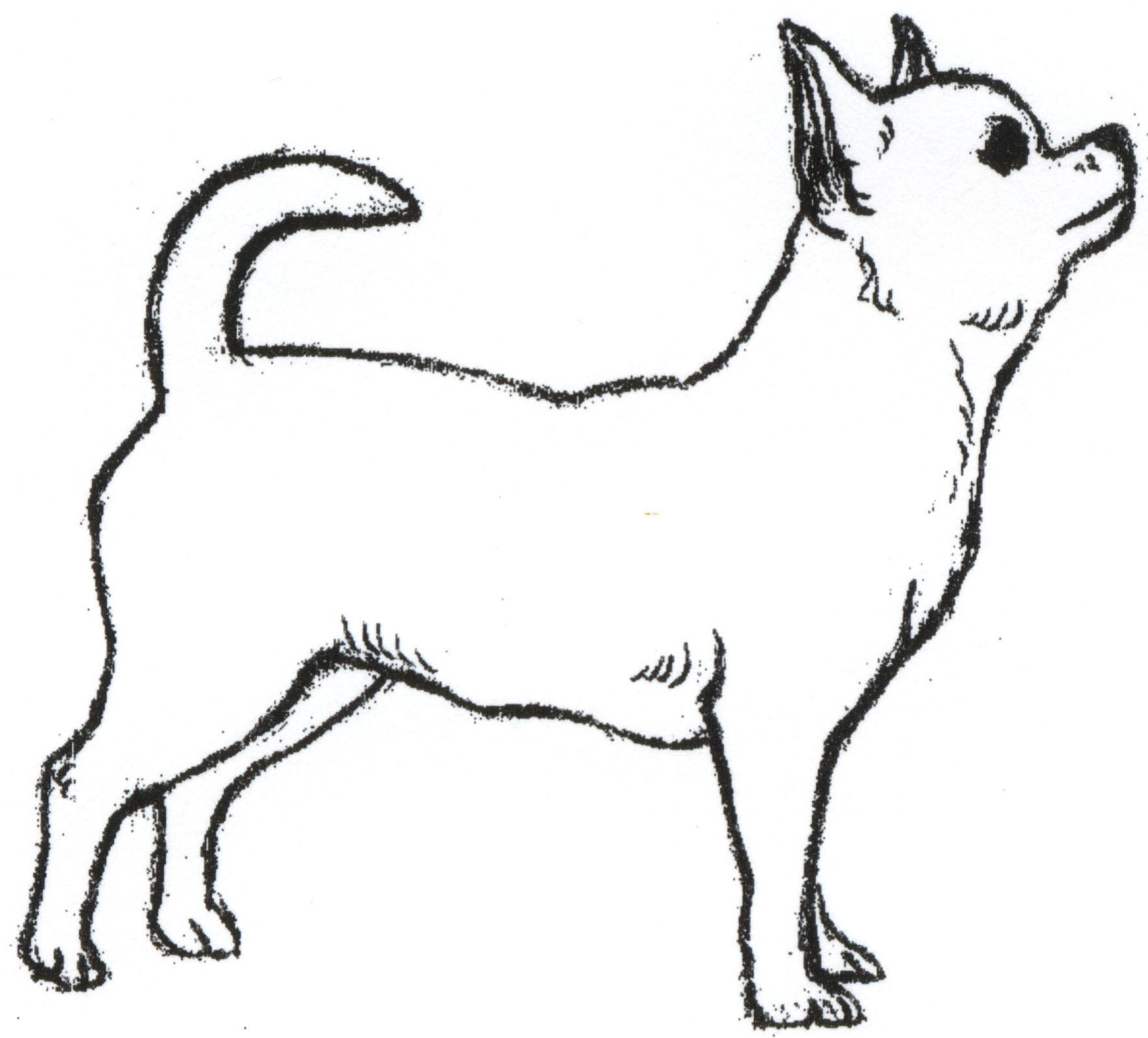 Chihuahua clipart chiwawa. Drawings of chihuahuas pencil