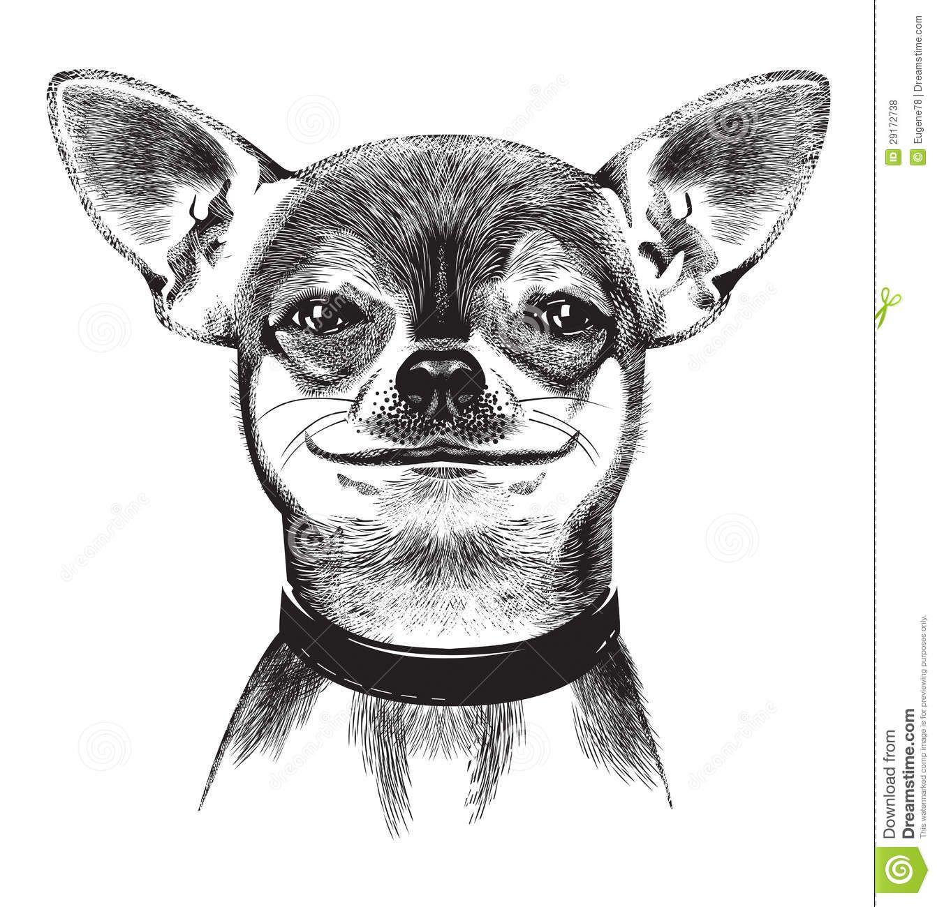 Cartoon dog clip art. Chihuahua clipart chiwawa