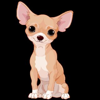 Chihuahuas cartoon images gallery. Chihuahua clipart chiwawa