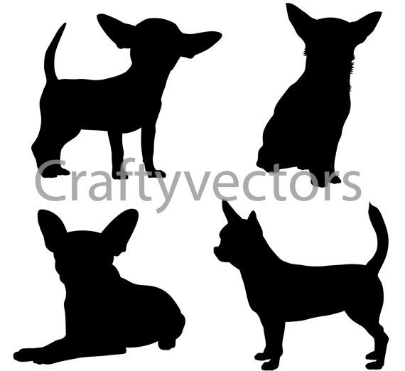 Dog silhouettes vector svg. Chihuahua clipart chiwawa