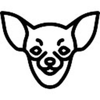 Chihuahua clipart face. Vectors photos and psd