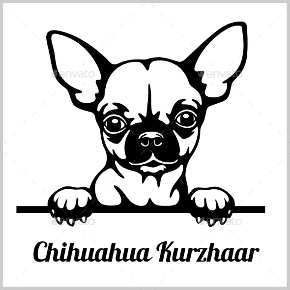 Peeking dogs . Chihuahua clipart face