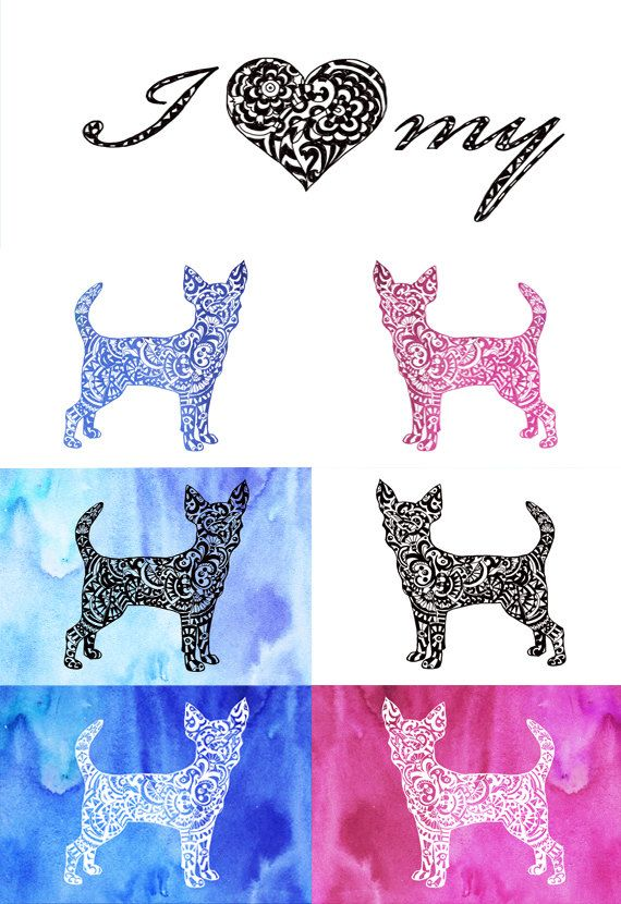 Zentangle clip art cut. Chihuahua clipart file