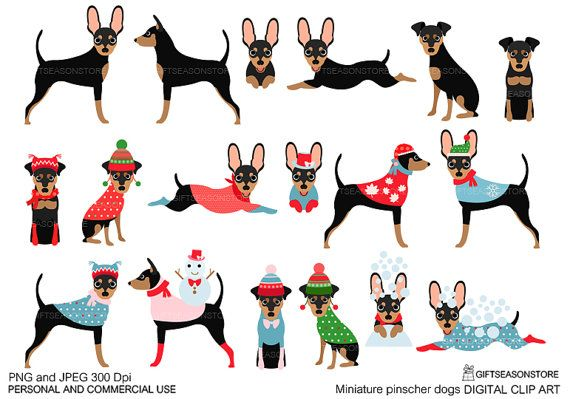 Chihuahua clipart mini pinscher. Miniature dogs digital clip