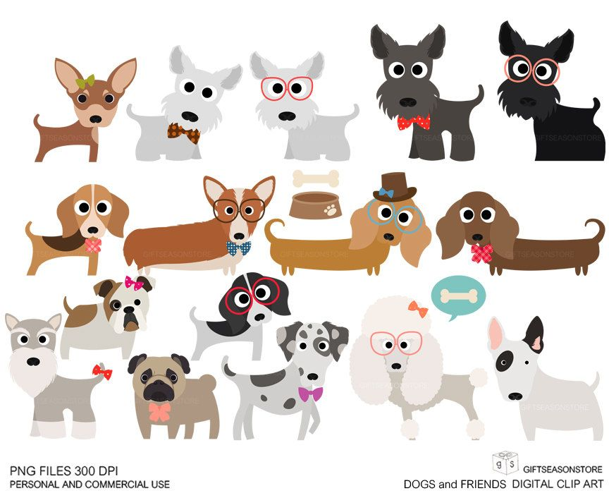Dogs and friends clip. Chihuahua clipart schnauzer