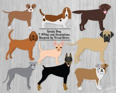 Chihuahua clipart small animal. Toy dog bundle breeds
