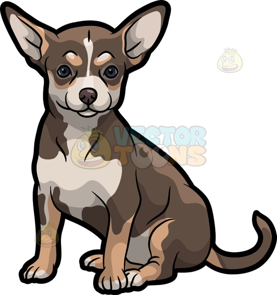 Chihuahua clipart small dog. An adorable a with