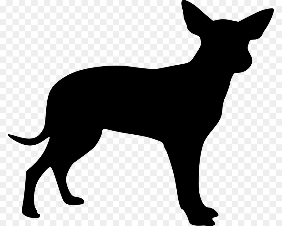 Chihuahua clipart small dog. Cat and cartoon puppy
