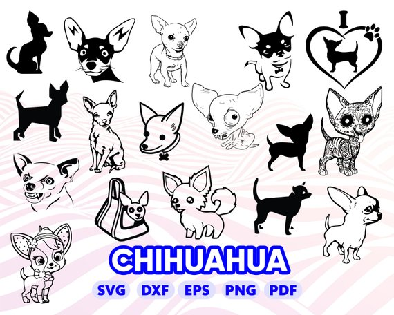 Chihuahua Clipart Svg Chihuahua Svg Transparent Free For Download On Webstockreview 2020