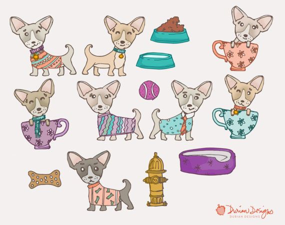 Commercial use cute puppy. Chihuahua clipart teacup chihuahua