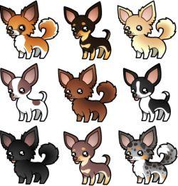 Drawing at getdrawings com. Chihuahua clipart teacup chihuahua