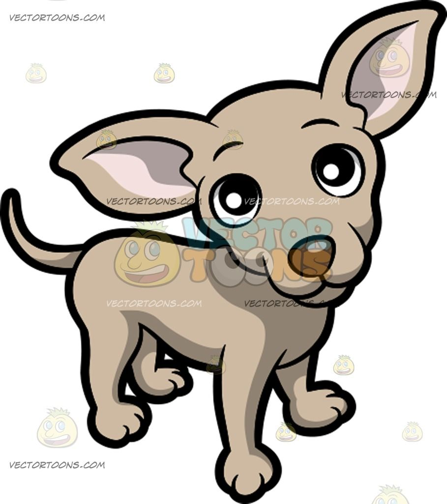 A cute standing on. Chihuahua clipart tiny dog