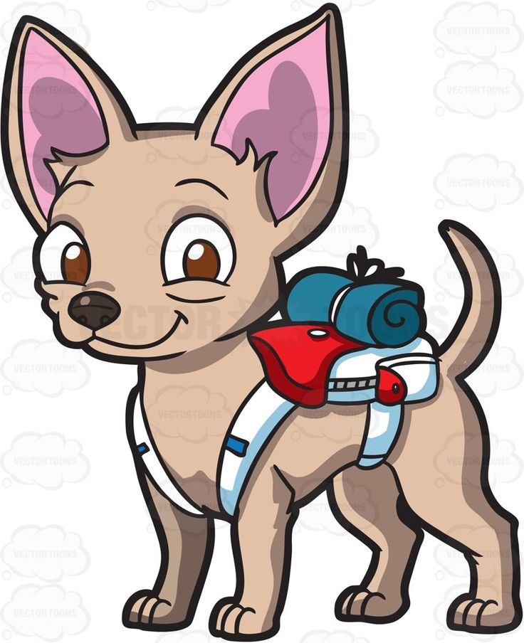 Chihuahua clipart vector. Free download best on