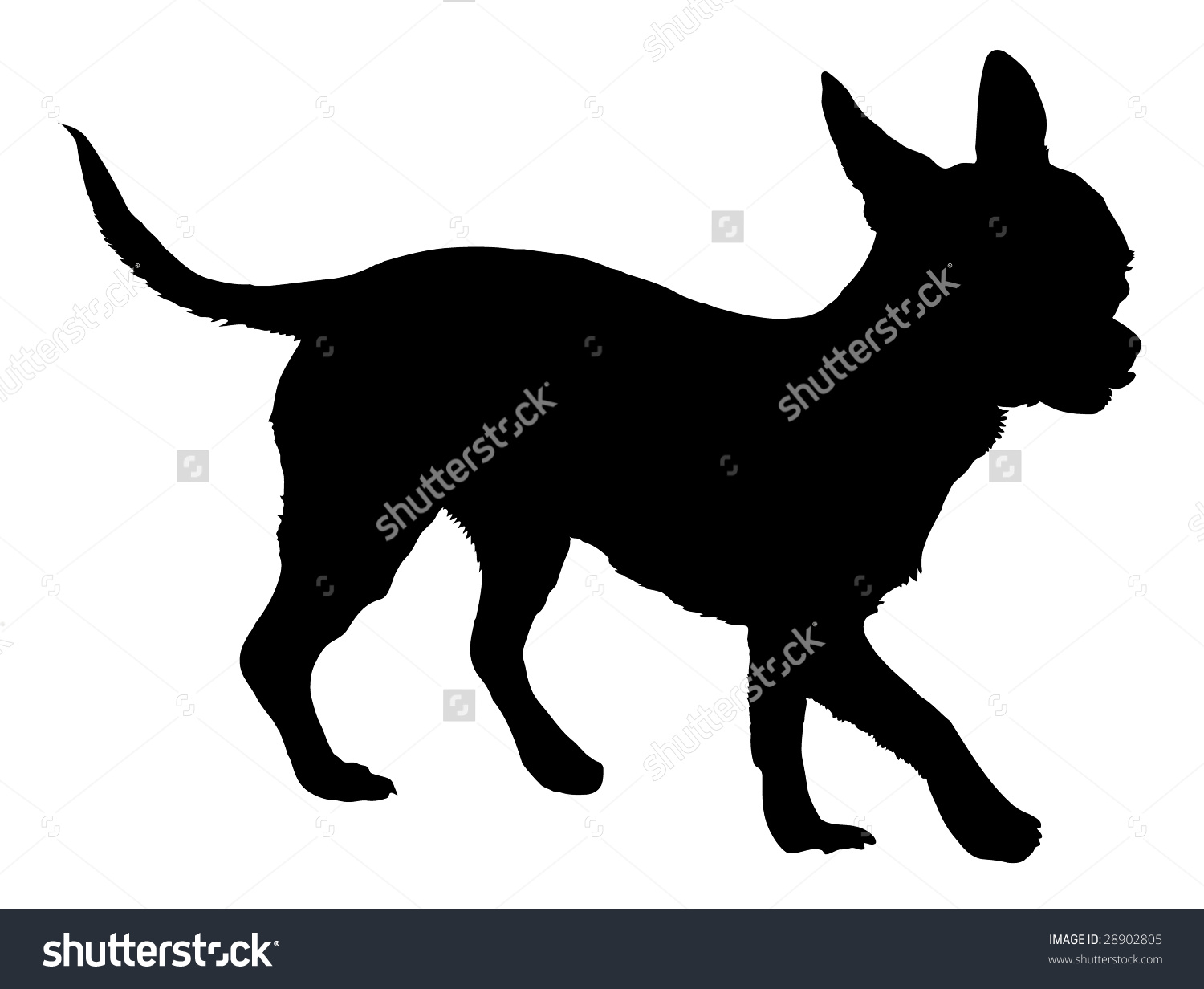 Silhouette free pnglogocoloring pages. Chihuahua clipart vector