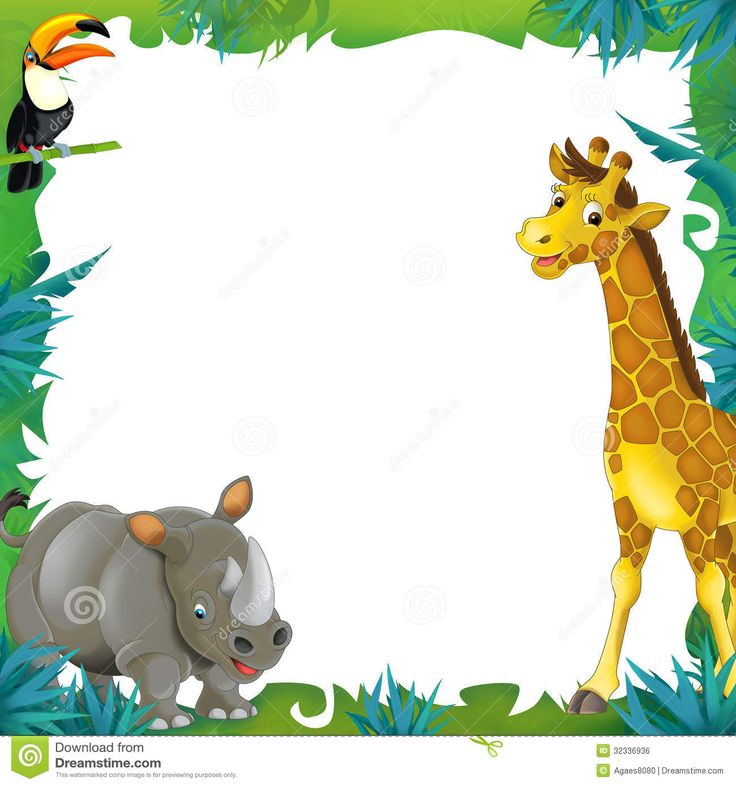 best images on. Animals clipart boarder