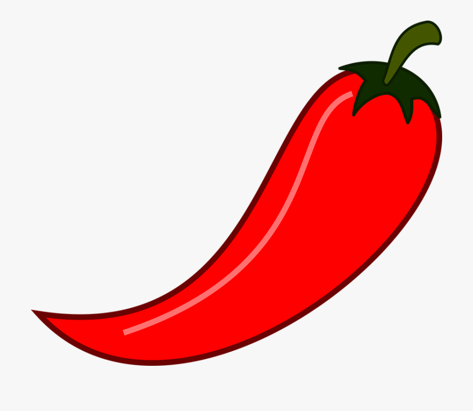 Chili chile illustration isolated. Peppers clipart spicy food