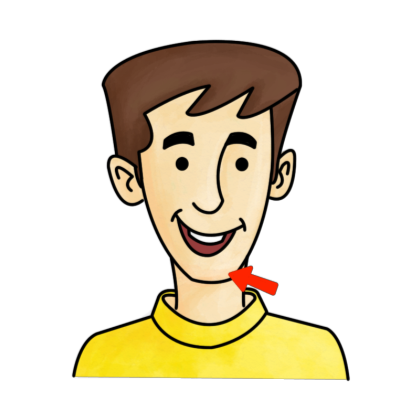 Chin clipart. Clipground