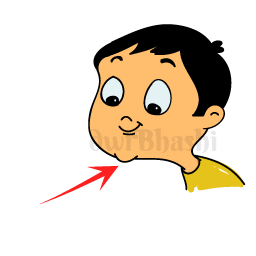 Chin clipart body part. Learn parts vocabulary in