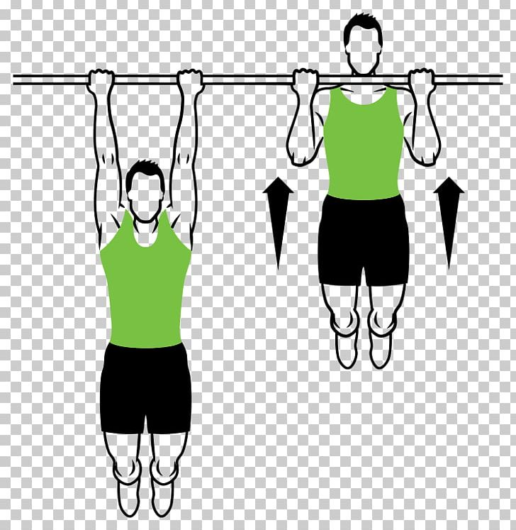 Chin muscle png abdomen. Exercise clipart pull up