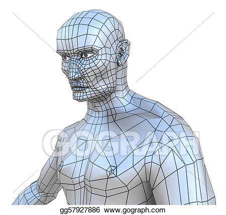Male mesh torso with. Chin clipart human neck