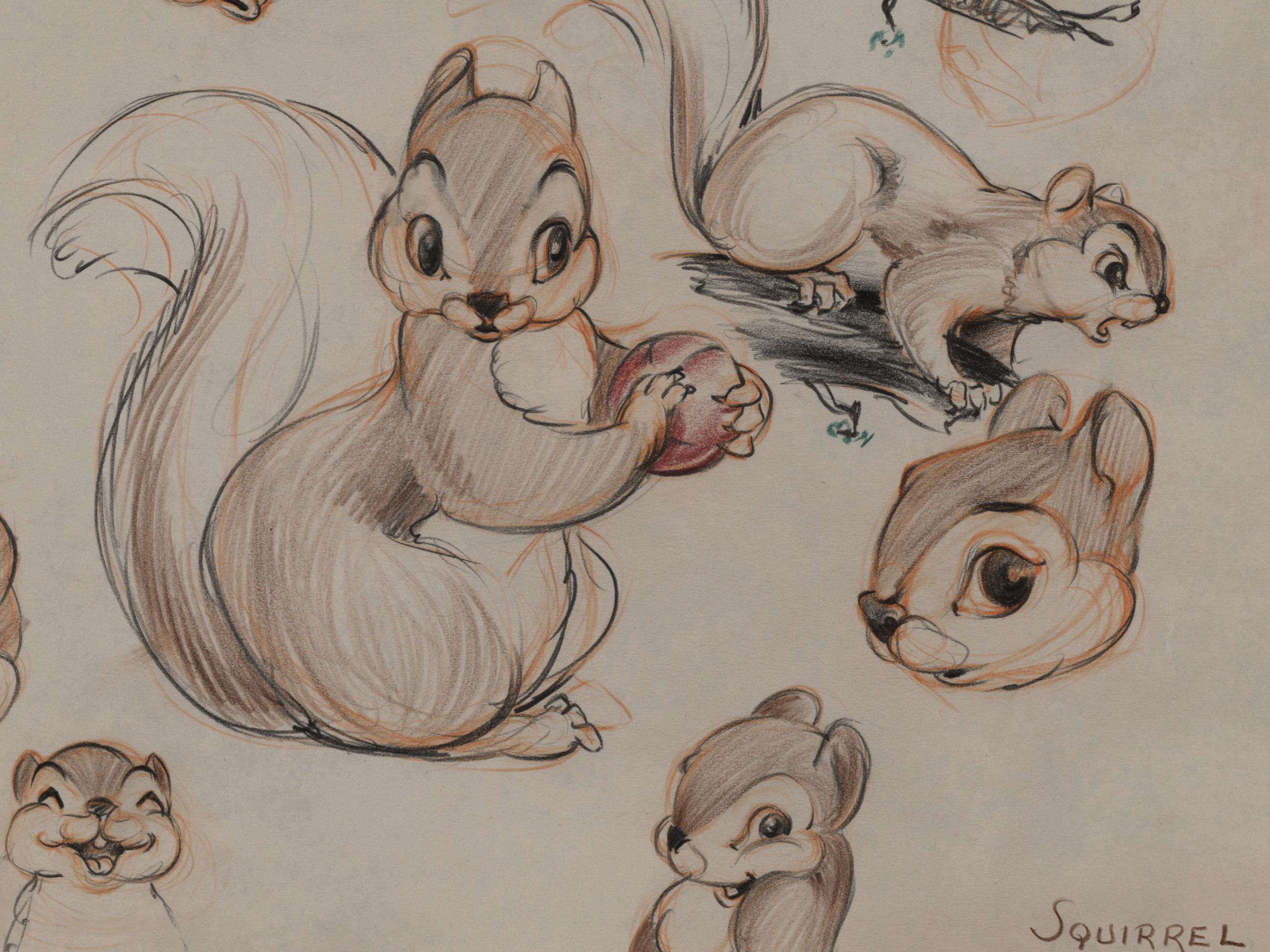 Chipmunk clipart bambi character. Lost characters girls in