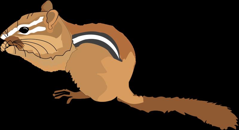 Clip art royalty free. Chipmunk clipart brown