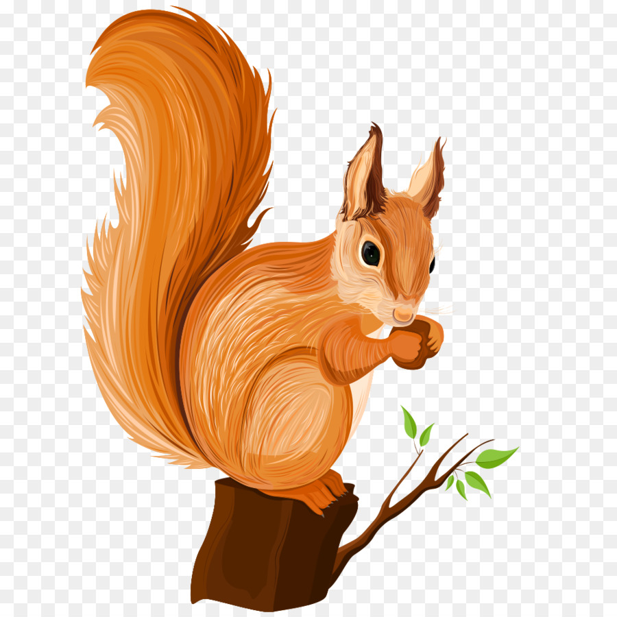 Squirrel cartoon illustration png. Chipmunk clipart dancing