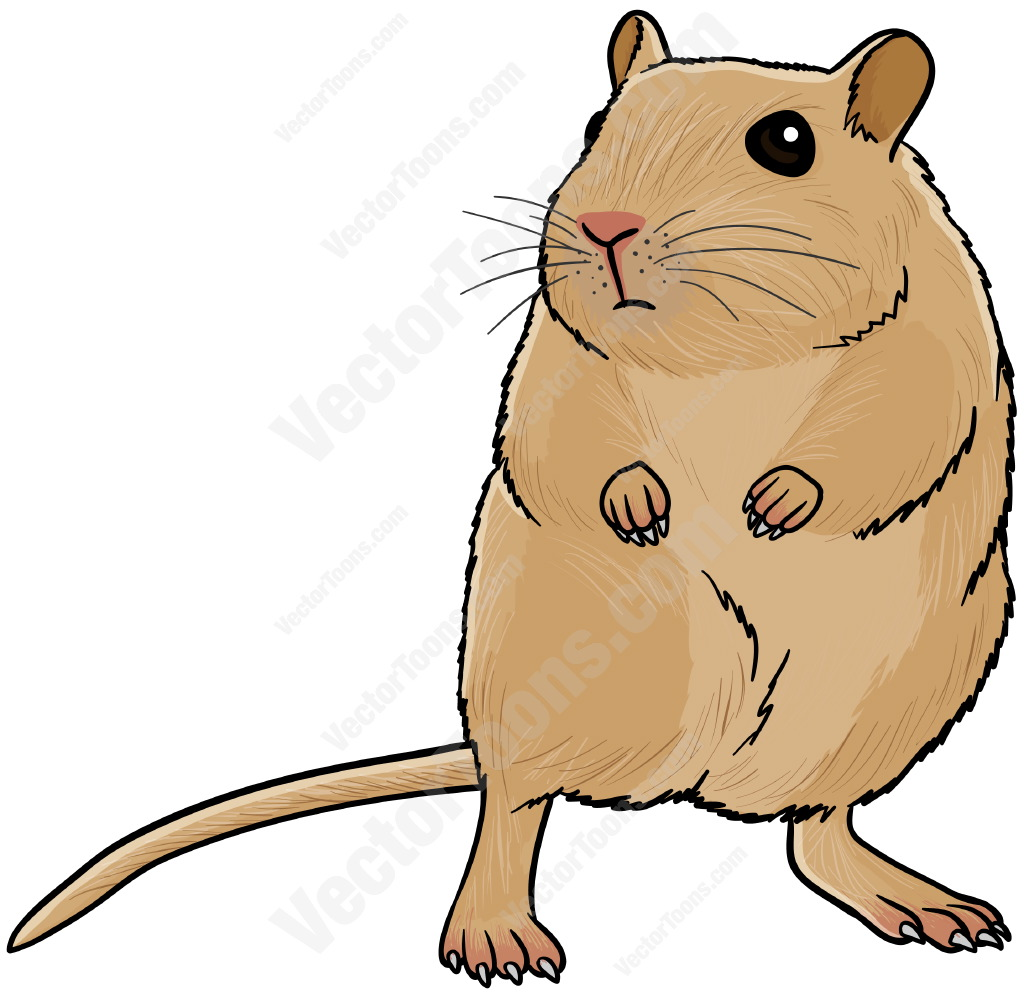 Free download best on. Hamster clipart gerbil
