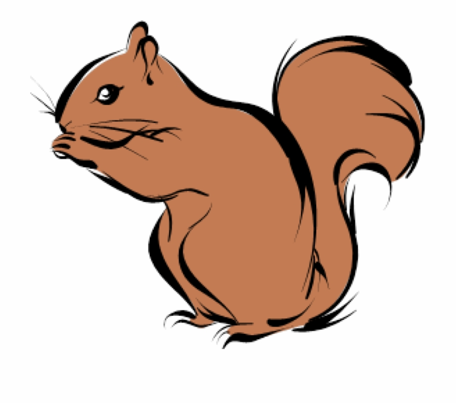 Fall drawings of cartoon. Chipmunk clipart squirral