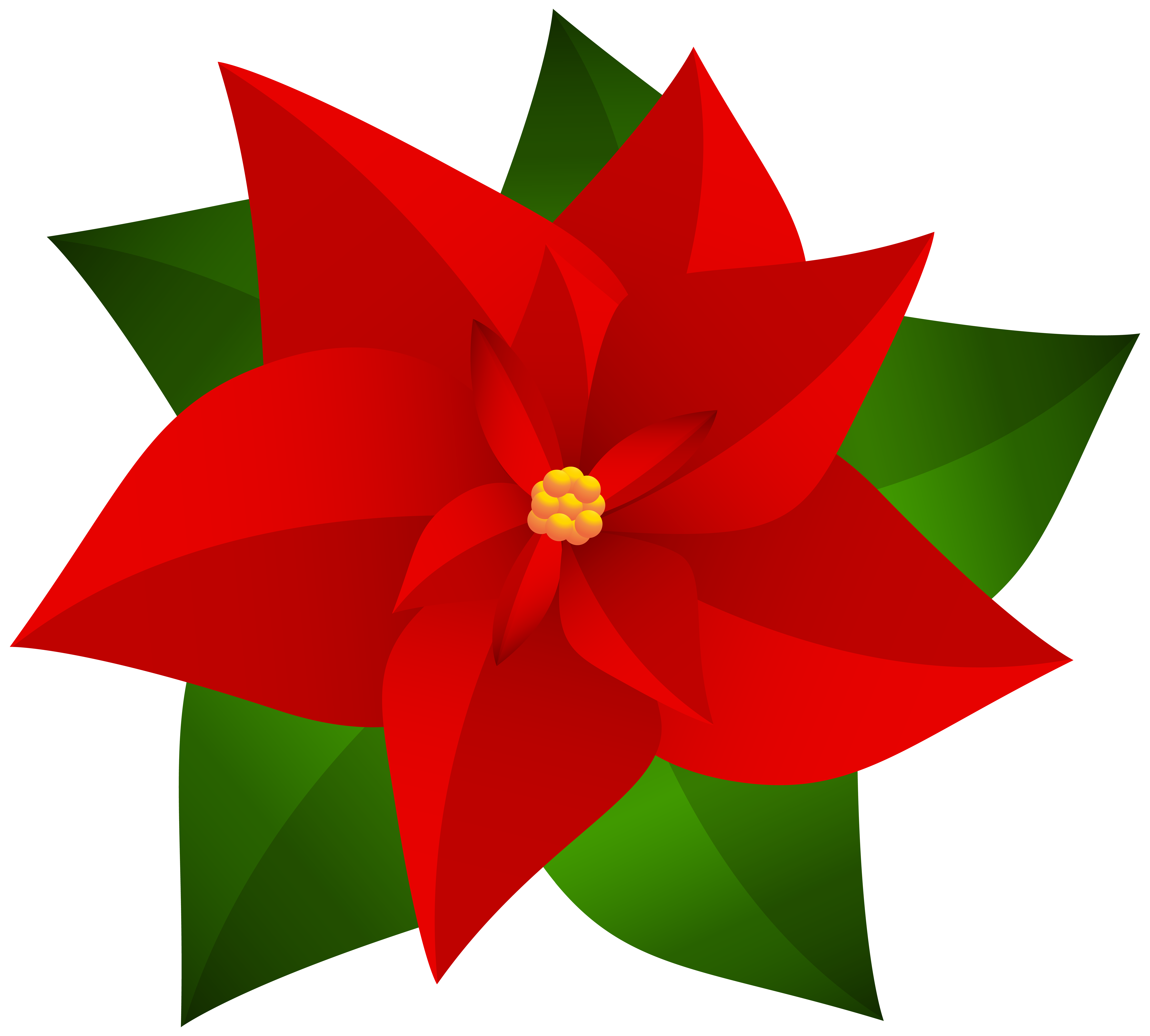 Christmas transparent clip art. Holly clipart poinsettia
