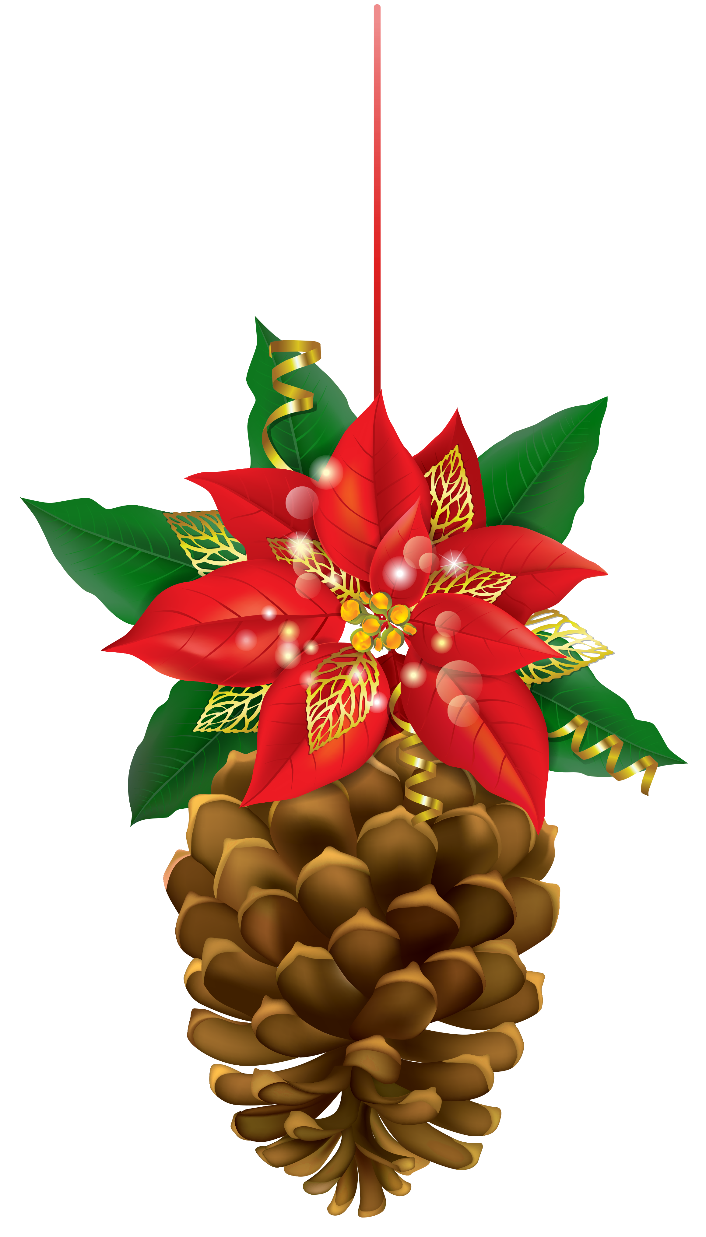 Pinecone with poinsettia png. Clipart sun christmas