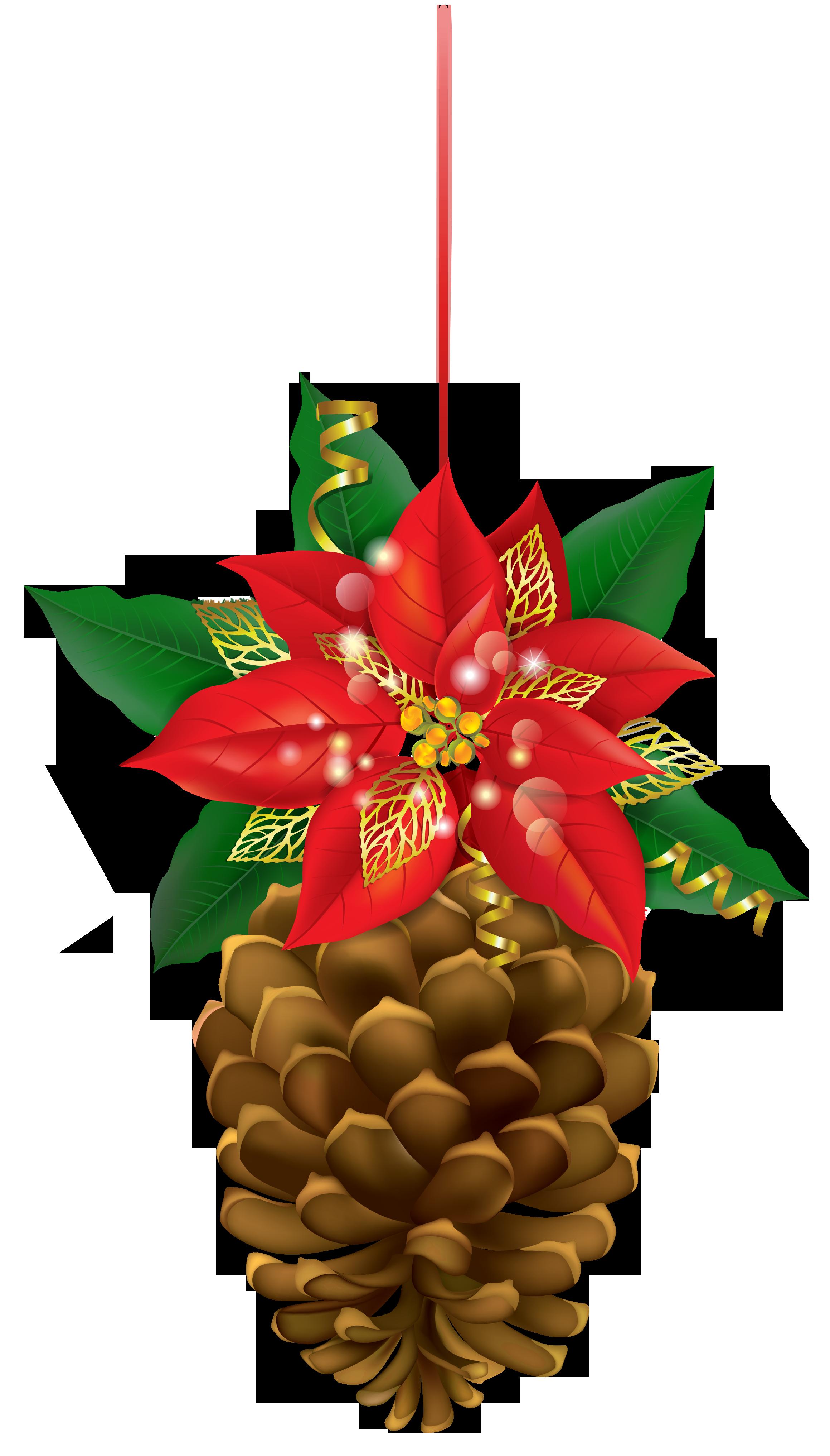 Poinsettias clipart ornament. Christmas pinecone with poinsettia