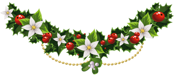 Transparent mistletoe garland with. Christmas flower png