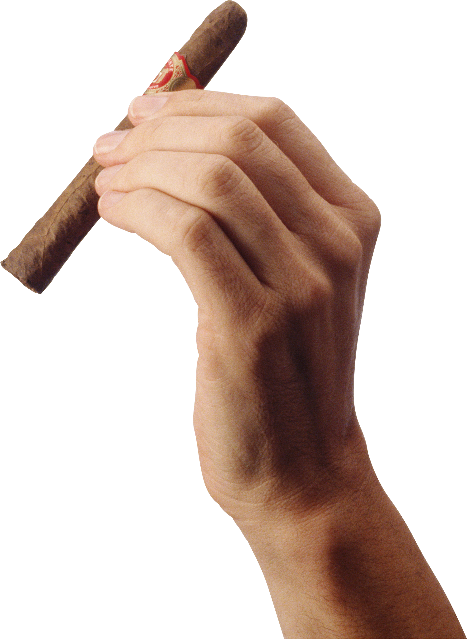 Cigar clipart file. Hand holding isolated stock