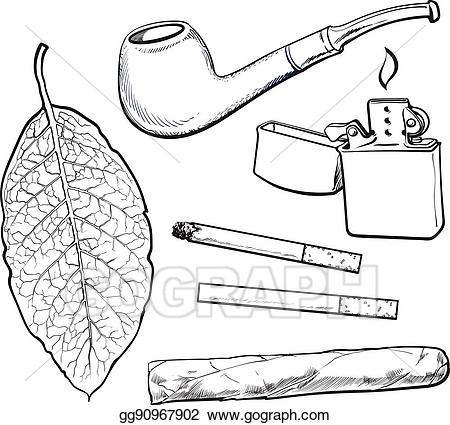 Cigar clipart sketch. Vector style smoking pipe