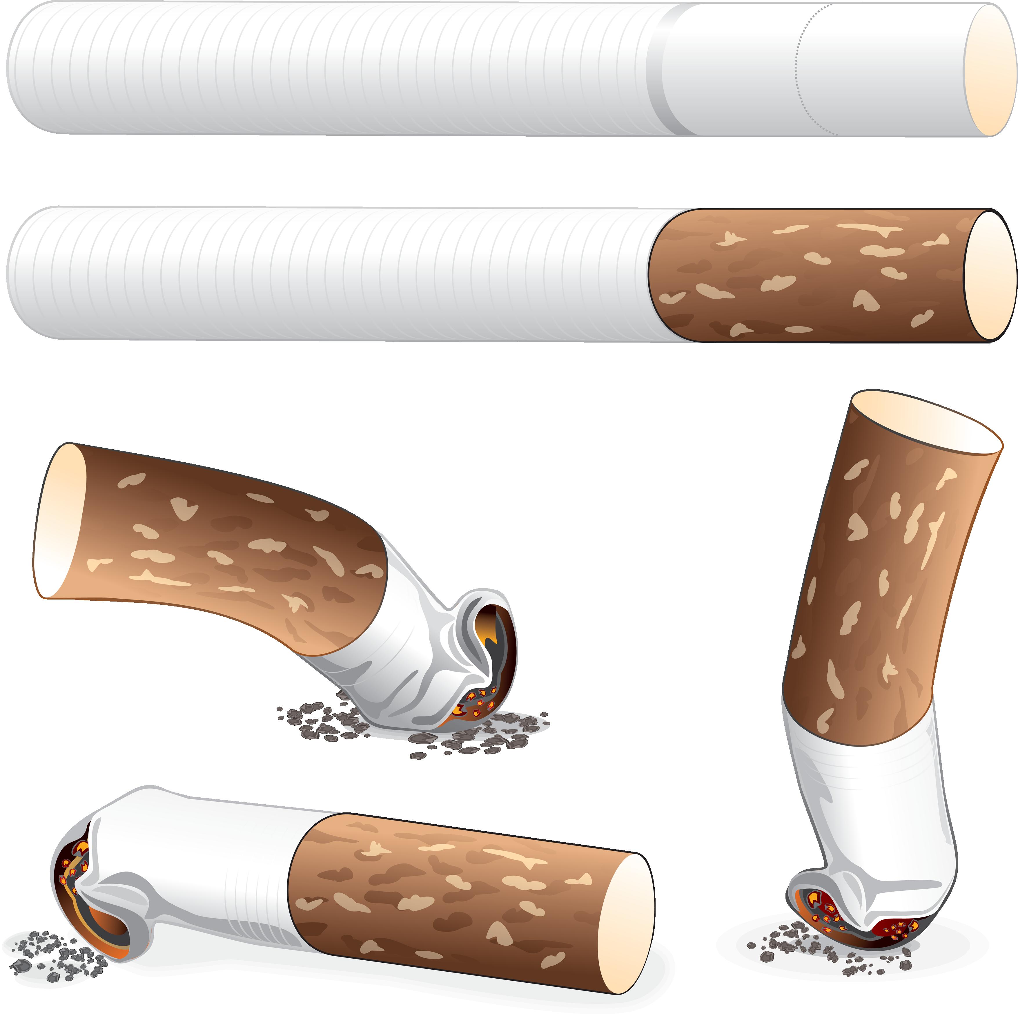 Cigarette png images free. Cigar clipart vector